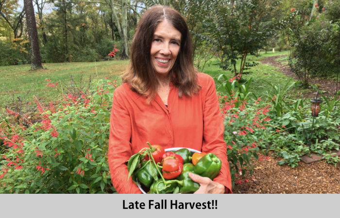 Nancy with Surprise Fall Pepper Crop