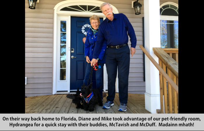 On their way back home to Florida, Diane and Mike took advantage of our pet-friendly room, Hydrangea, for a quick stay with their buddies, McTavish and McDuff.Madainn mhath!